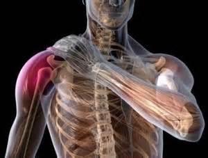 Dolor de hombro: estrategias para mejorar su fuerza y movilidad