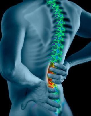 Dolor de espalda baja: La lumbar y la pelvis