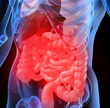 Gut inflammation